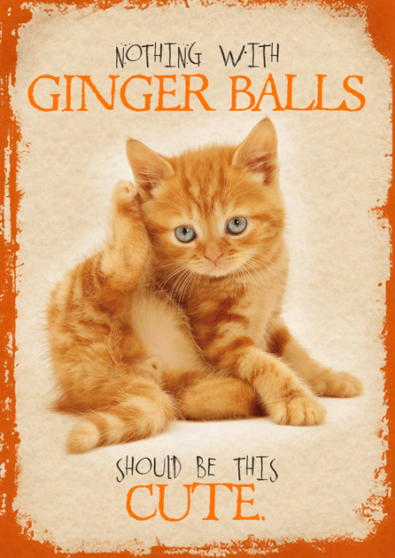 Oi! Ginger!