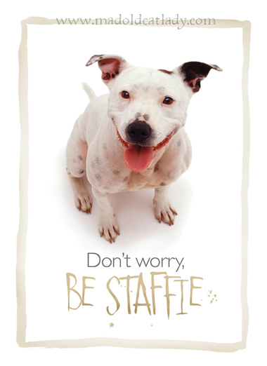 Don't Worry Be Staffie