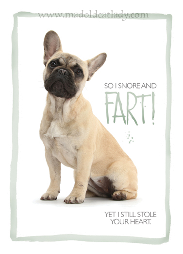 Fartie Frenchie