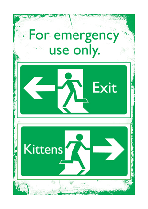 Emergency Kittens