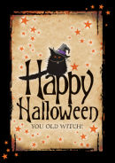 Happy Halloween You Old Witch!