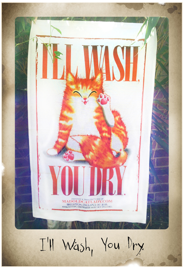 I'll Wash, You Dry