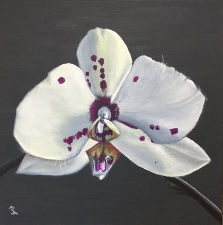 Orchid 2 or The Flower That Gasped