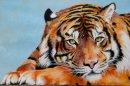 Tiger, Tiger burning bright...