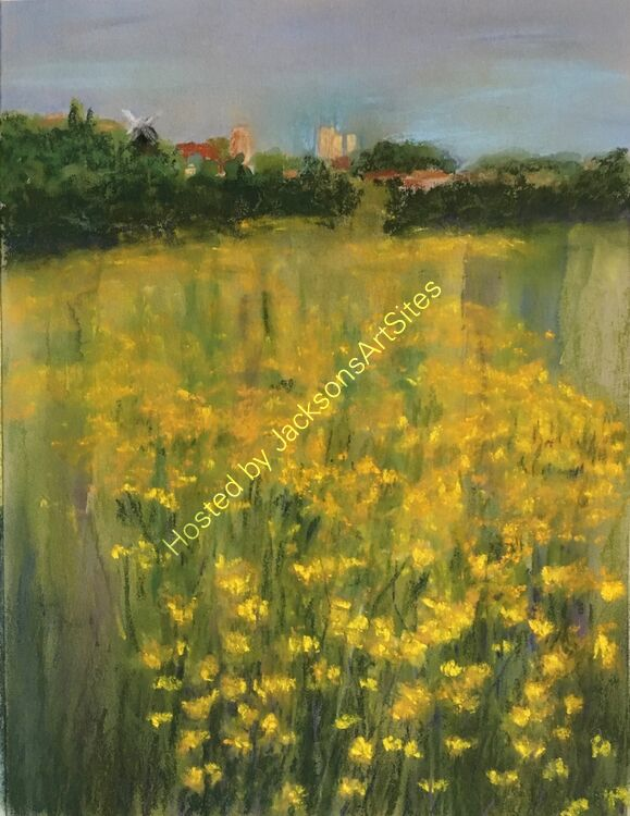 Buttercups on the West Common, Lincoln