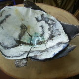 shards double bowl for Herefordshire Landscape