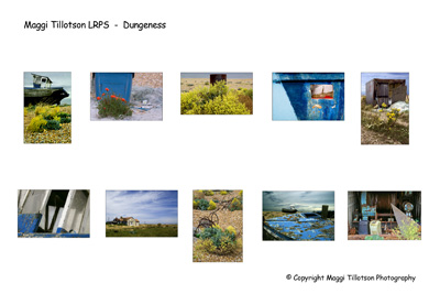 LRPS Panel - Dungeness