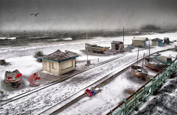 The Deserted Beach-2013 acceptance