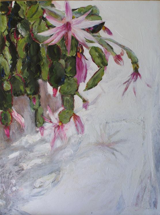 Agnes Cactus