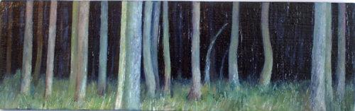 Dark Wood 1