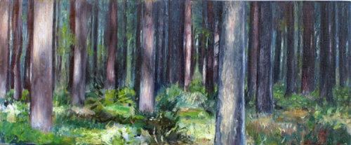 Dark Wood 3