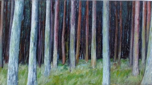 Dark Wood 5