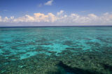 Great Barrier Reef - (Outer) Ribbon Reef 3