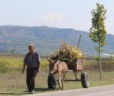 Albania - another farmer > a hard life