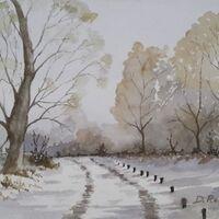 Winter Trees, by Derek Robinson