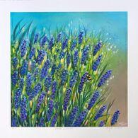 Maria's Lavender
