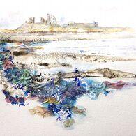 Dunstanburgh Waves