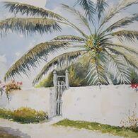 Garden In Nassau (after W Homer)