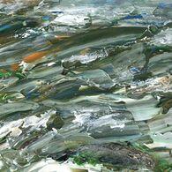 Fish Teeming, by Nic Best