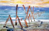 Sea-washed timbers, Dumfries & Galloway. Watercolour on paper 34x25 cm. Unframed £80