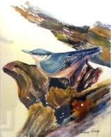 Nuthatch  Watercolour Inks  44 X 37cm  £68