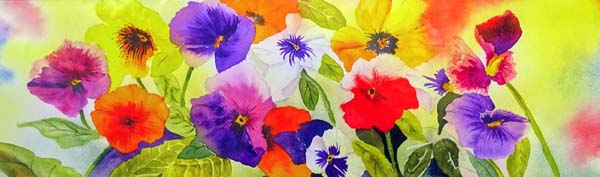 "Pansies, mounted, unframed limited edition print of a watercolour, size 20"" x 6""   £24"