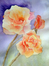 Peace roses, watercolour, 20x30cm, framed, £60