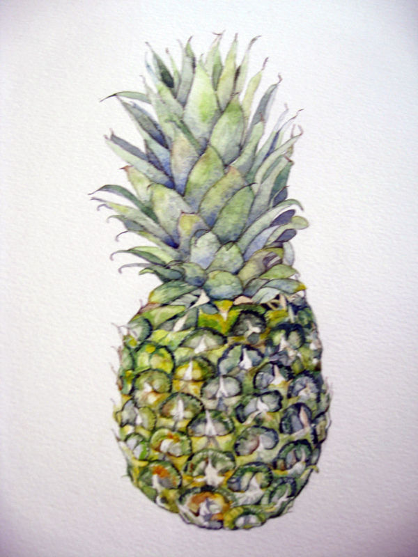 Pineapple, watercolour