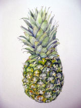 Pineapple, watercolour