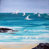 Colonsay terns, oils on canvas, block mounted, £150