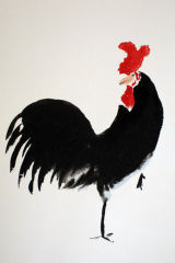 Rooster, Ink & Watercolour, 20x30cm, £90