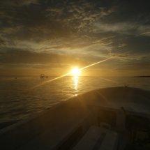 Christmas Island-31