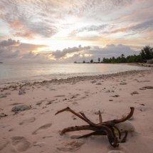 Christmas Island-9