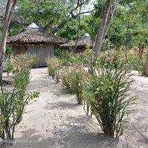 Madagascar (18 of 70)