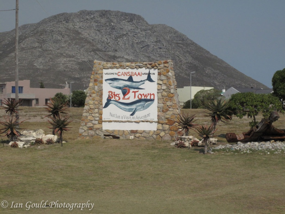 South Africa-15