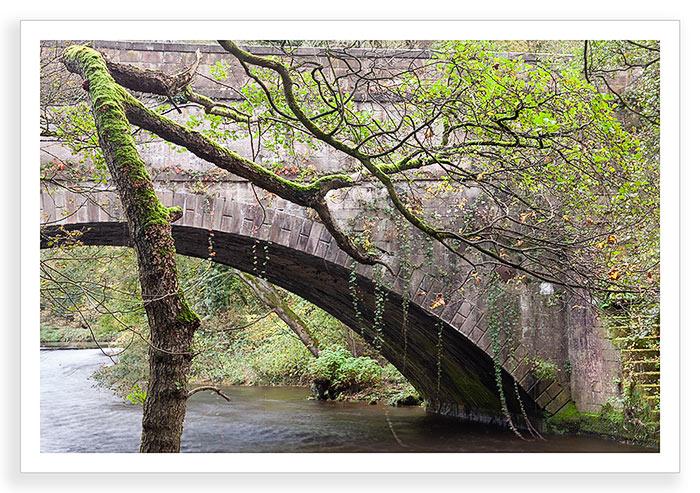 Aquaduct Autumn