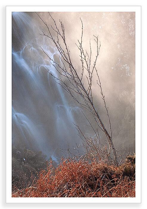 Backlit Falls