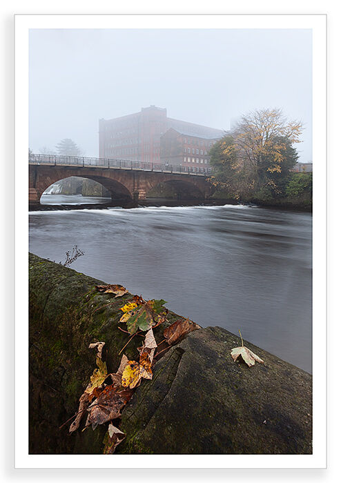 Mill and Mist