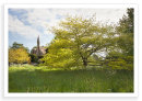 Clifton Spring