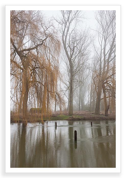 Duxford Mist