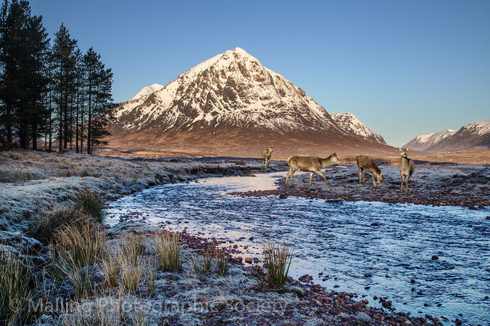 1 BY THE RIVER ETIVE by Patricia Begley