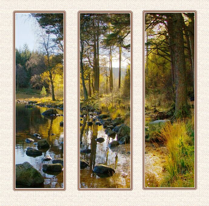 1 Blea Tarn by Patricia Begley