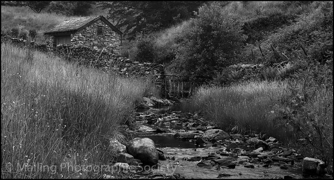 1 OLD SHED ABOVE STREAM by Jeff Ninnes