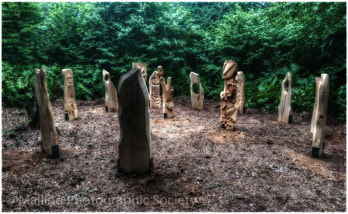 1 Woodhenge Clearing by Alan Smith