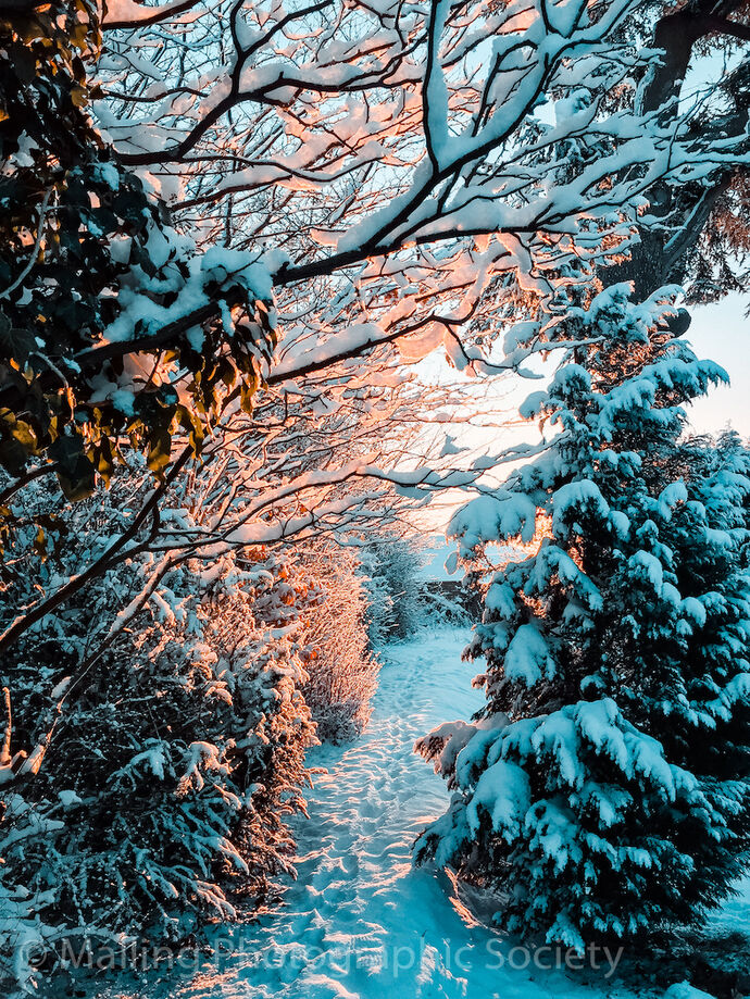 2 SNOWY GLOW by Lucy Shaw