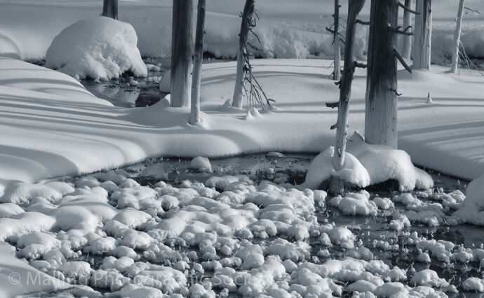 2 SNOW AND SHADOWS by Patricia Begley