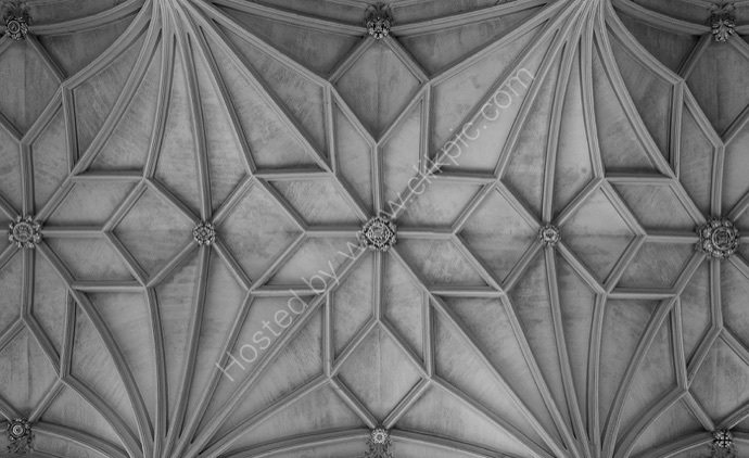Christchurch Priory Ceiling