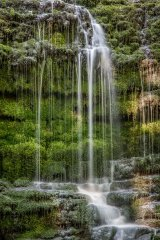 Mossy falls in the dales
