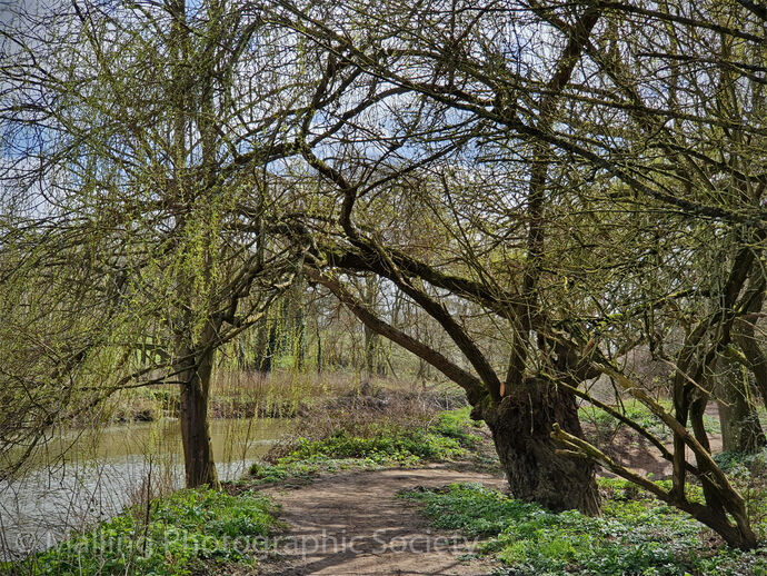 3 THE RIVER PATH by Hazel Turner