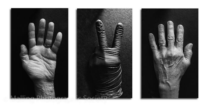 3 Two Fingers to Covid by Dave Todd